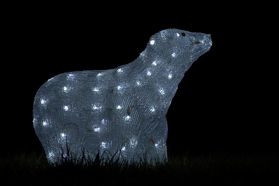 Christmas Photograph - Polar Bear Decoration by Steev Stamford