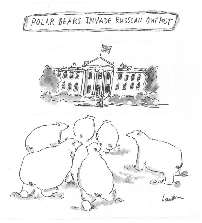 Polar Bear Invasion Drawing by Mary Lawton