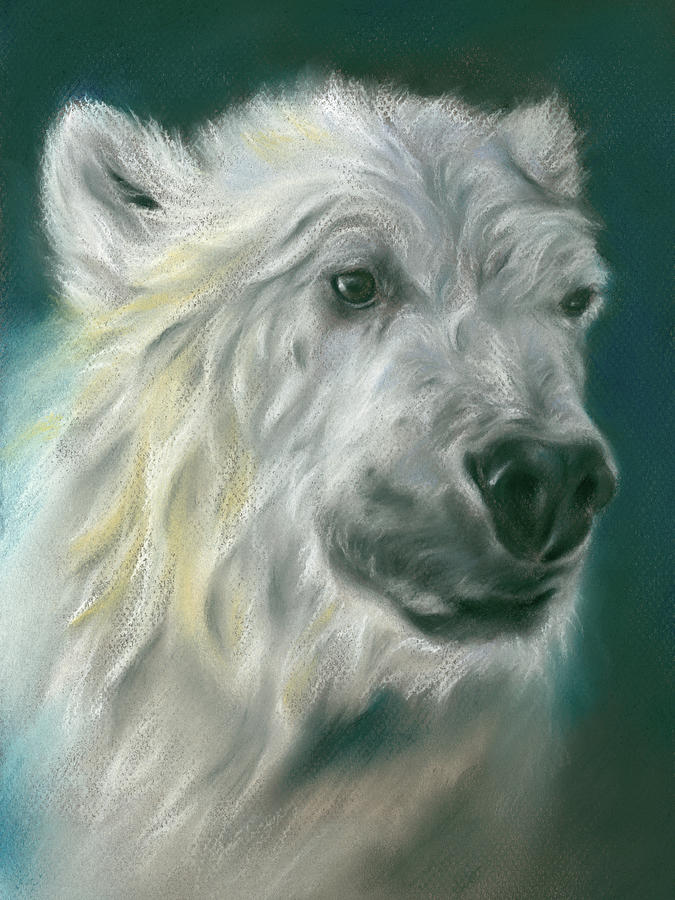 Polar Bear Portrait by MM Anderson