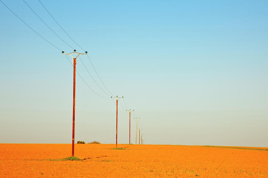 Poles In Field Photograph by Klaus W. Saue