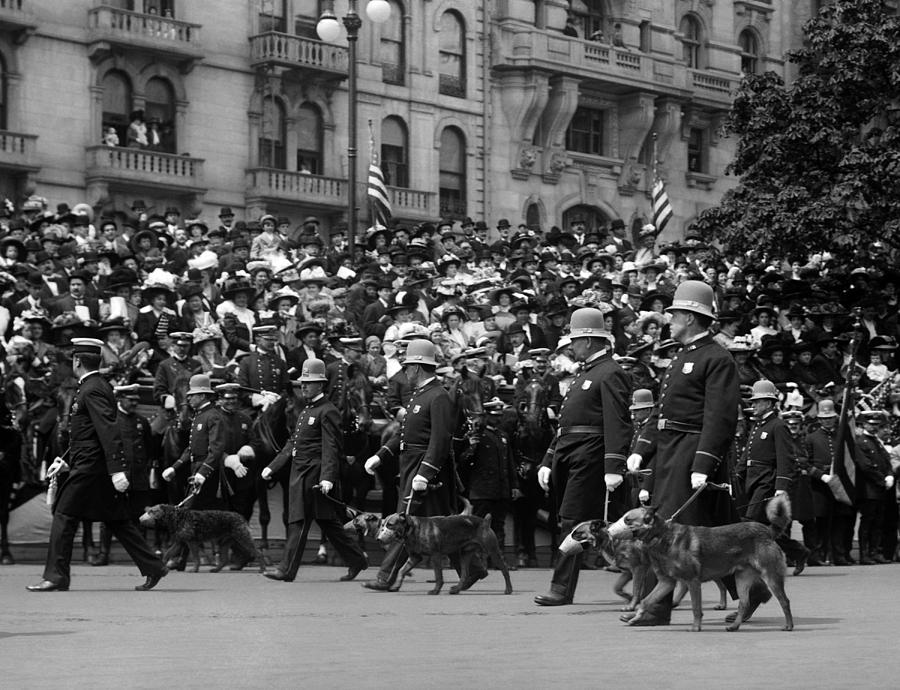 Police Dogs On Parade - 1900 by War Is Hell Store