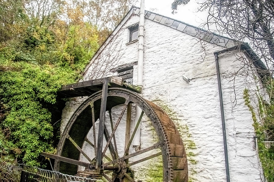 Polperro Waterwheel by Phyllis Taylor