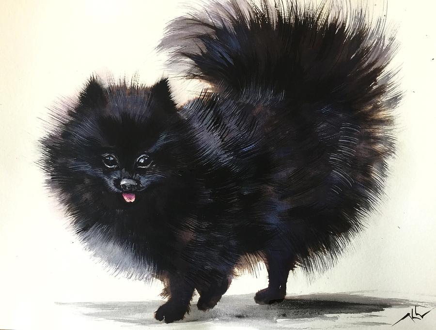 Pomeranian dog 6 by Katerina Kovatcheva