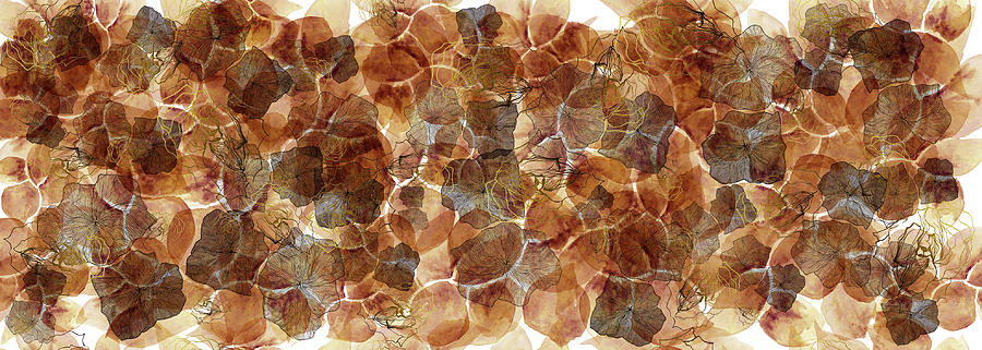 Watercolour Mixed Media - Pomme Brick by Queen Of Gaps