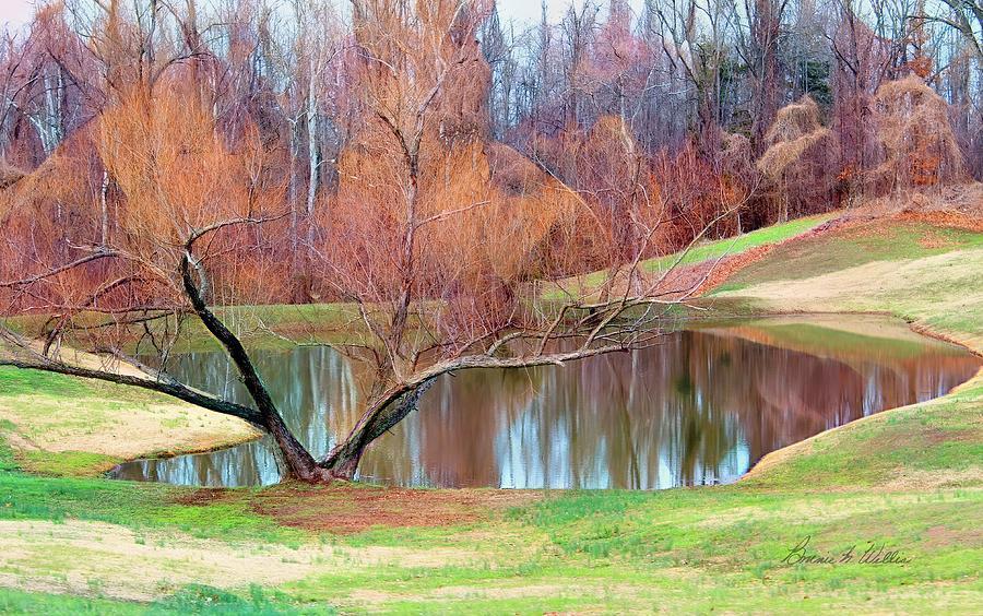 Pond on the Farm by Bonnie Willis