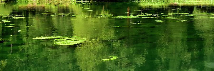 Pond Reflections by Jerry Sodorff