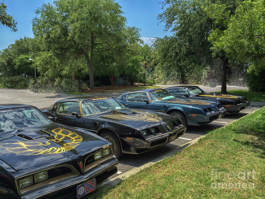 Pontiac Trans Am Parking Photograph