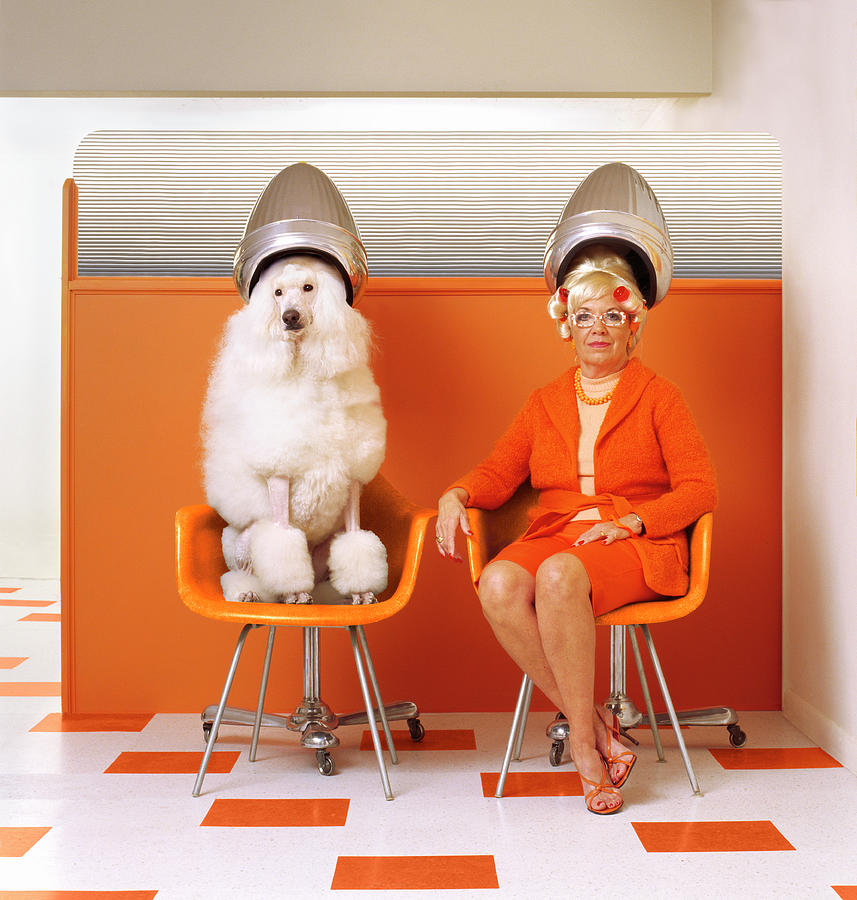 Poodle And Senior Woman Sitting Under Photograph by Kendall Mcminimy