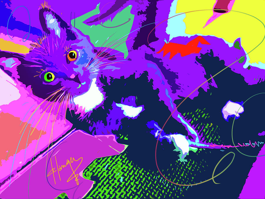 POP CAT Kitten With String by DC Langer
