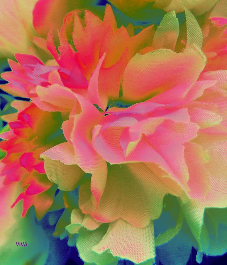 Pop Peony Petals by VIVA Anderson