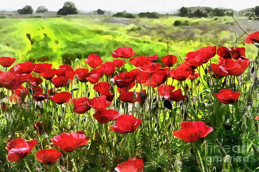 Poppies during springtime II by George Atsametakis