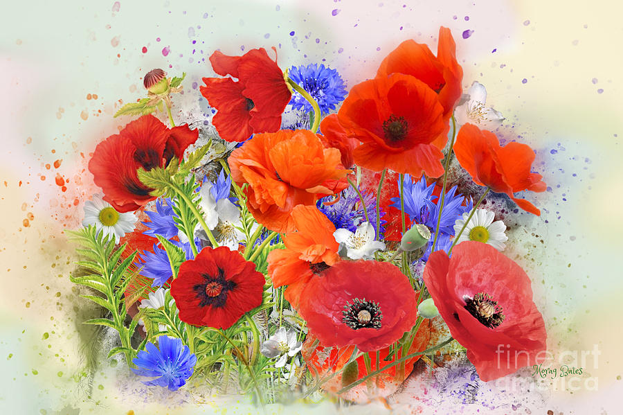 Poppies by Morag Bates