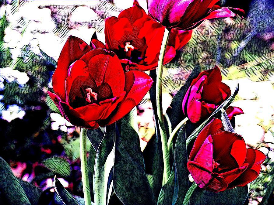 Poppies by Sarah Hanley
