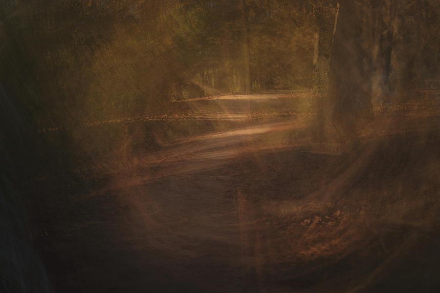 Portal by Dalibor Hanzal