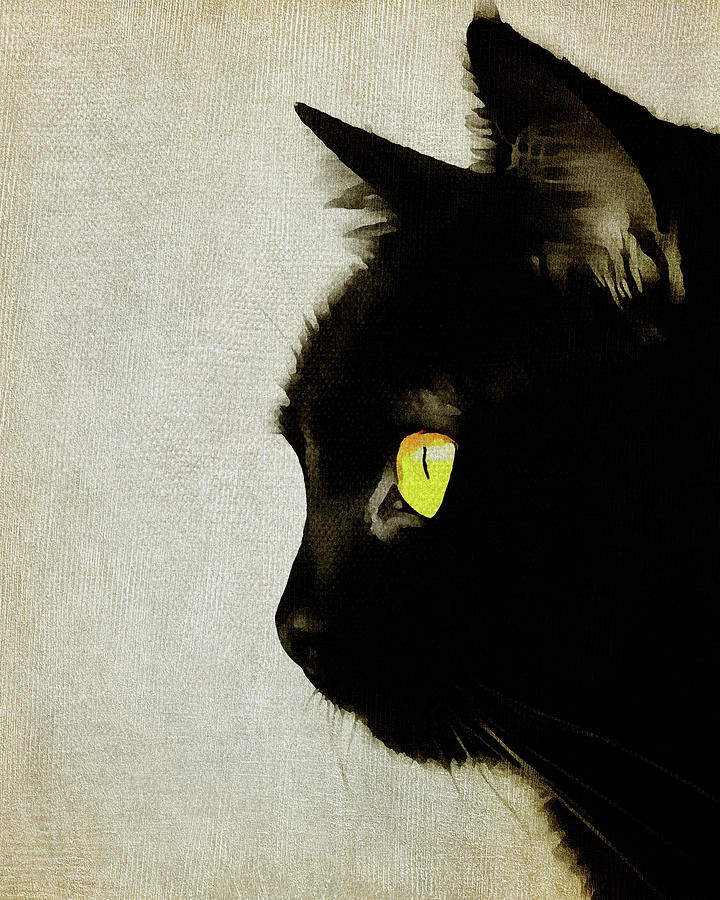 Portrait of a Cat by Jan Keteleer
