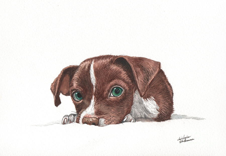 Portrait of a Chihuahua puppy in watercolor by Christopher Shellhammer