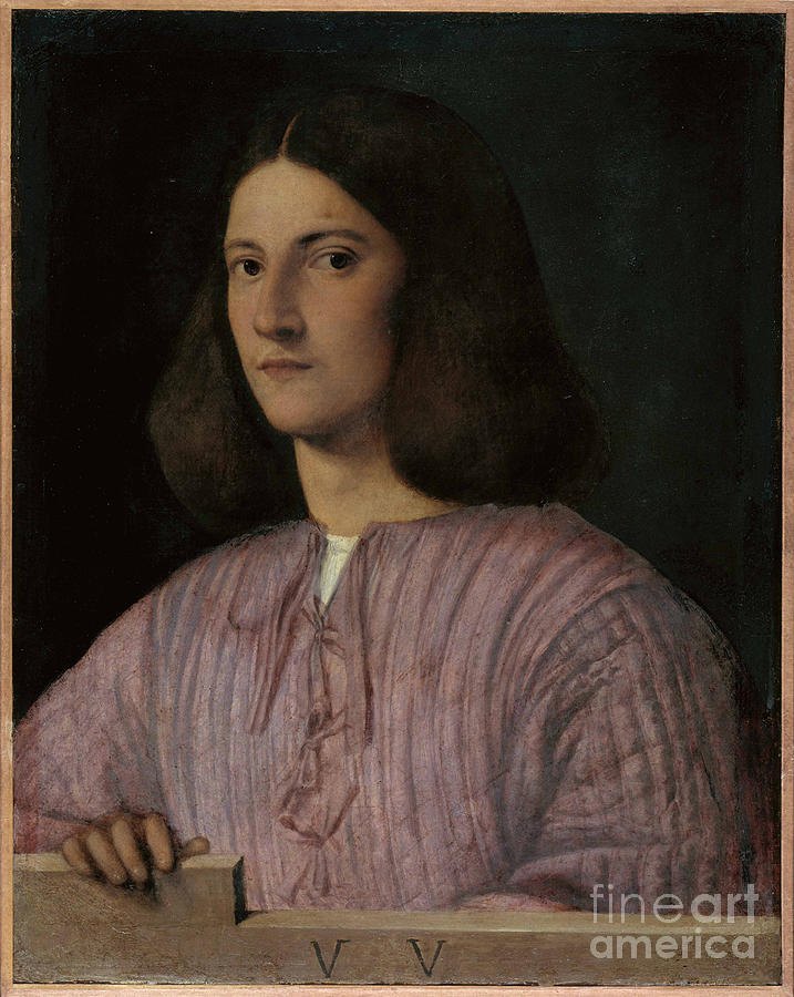 Portrait Of A Young Man Giustiniani Drawing by Heritage Images