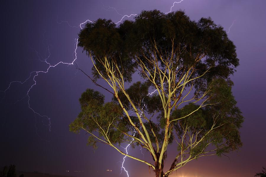 Portrait Of Lightning Striking Around Photograph by Neil Overy