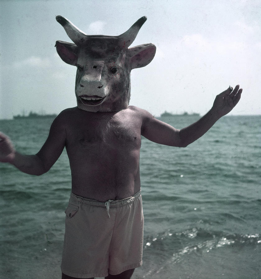 Portrait Of Masked Picasson On The Beach Photograph by Gjon Mili