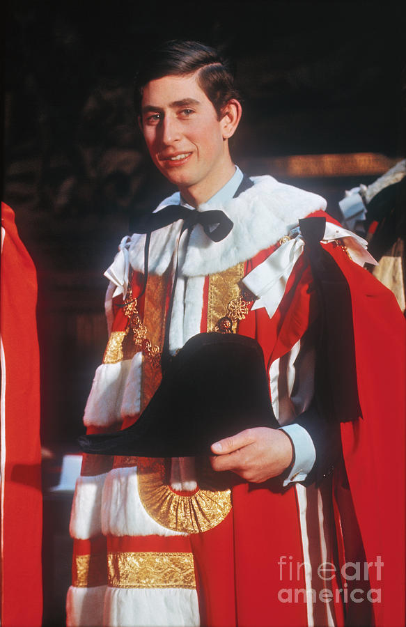 Portrait Of Prince Charles Photograph by Bettmann