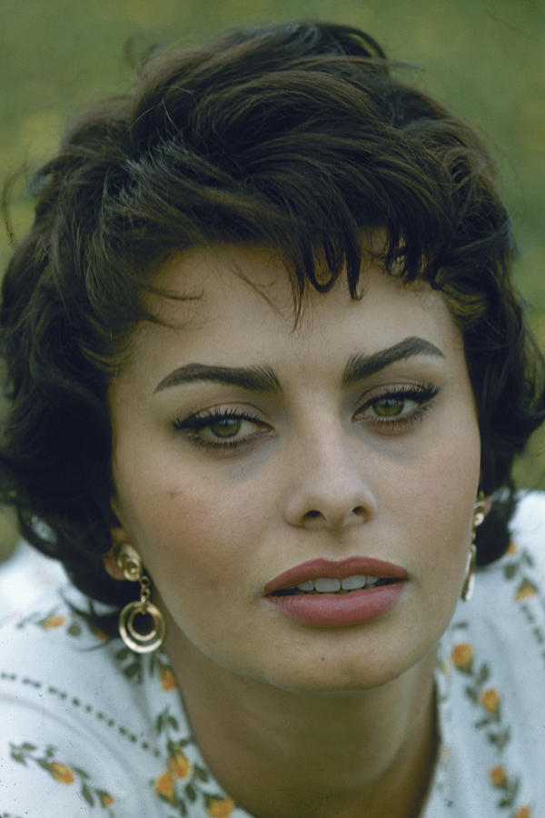 Portrait Of Sophia Loren Photograph by Loomis Dean