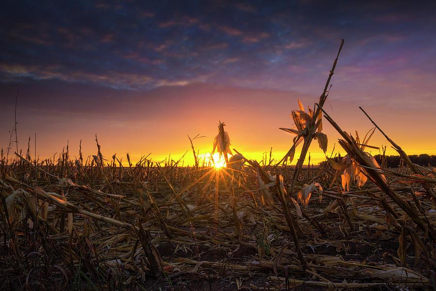 Harvest Photograph - Post Harvest  by Aaron J Groen