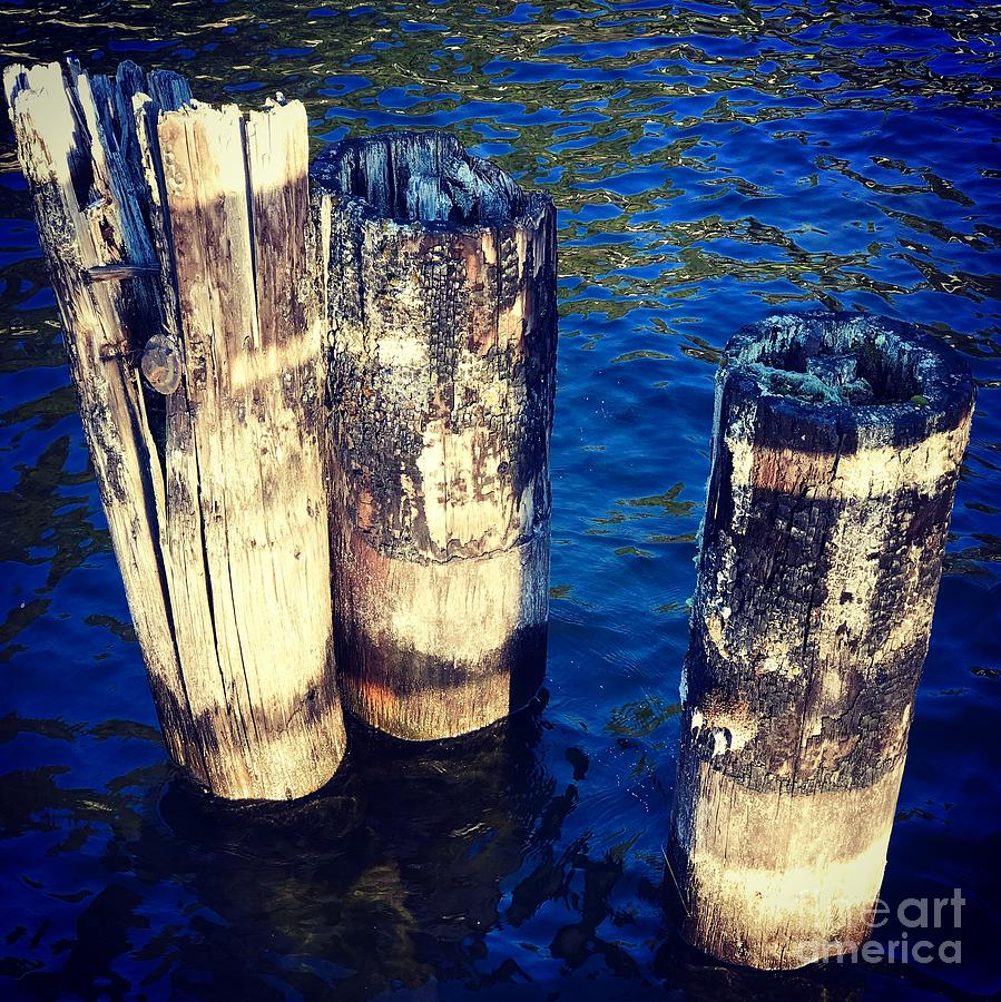 Posts in Water by Suzanne Lorenz