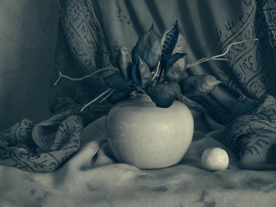 Pot and Pods Still Life by Sandra Selle Rodriguez