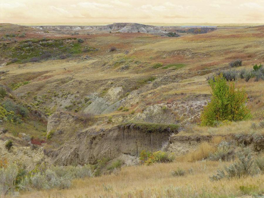 North Dakota Photograph - Prairie Edge September Reverie by Cris Fulton