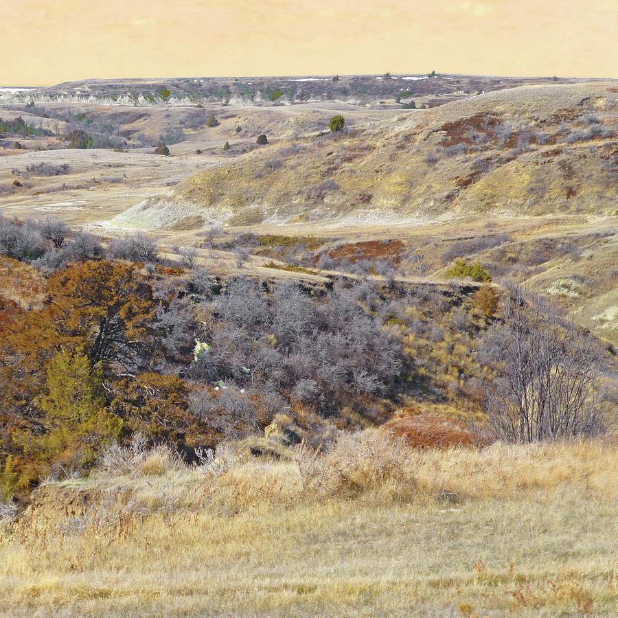 North Dakota Photograph - Prairie Slopes Reverie by Cris Fulton