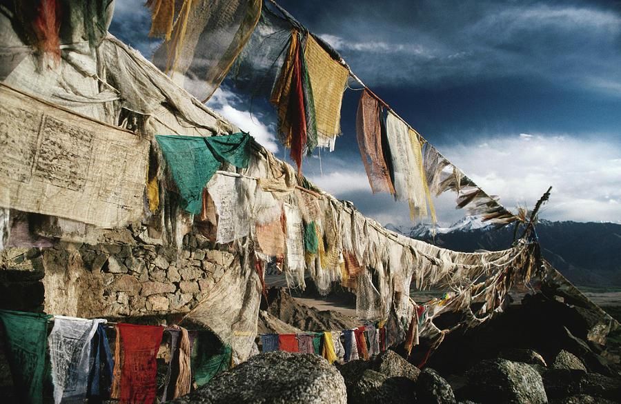 Himalayas Photograph - Prayer Flags Above Leh, Ladakh, Leh by Richard Ianson