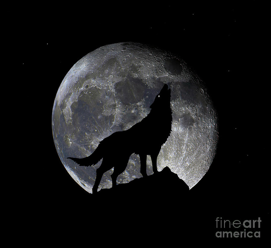 Pre Blood Red Wolf Supermoon Eclipse 873o by Ricardos Creations