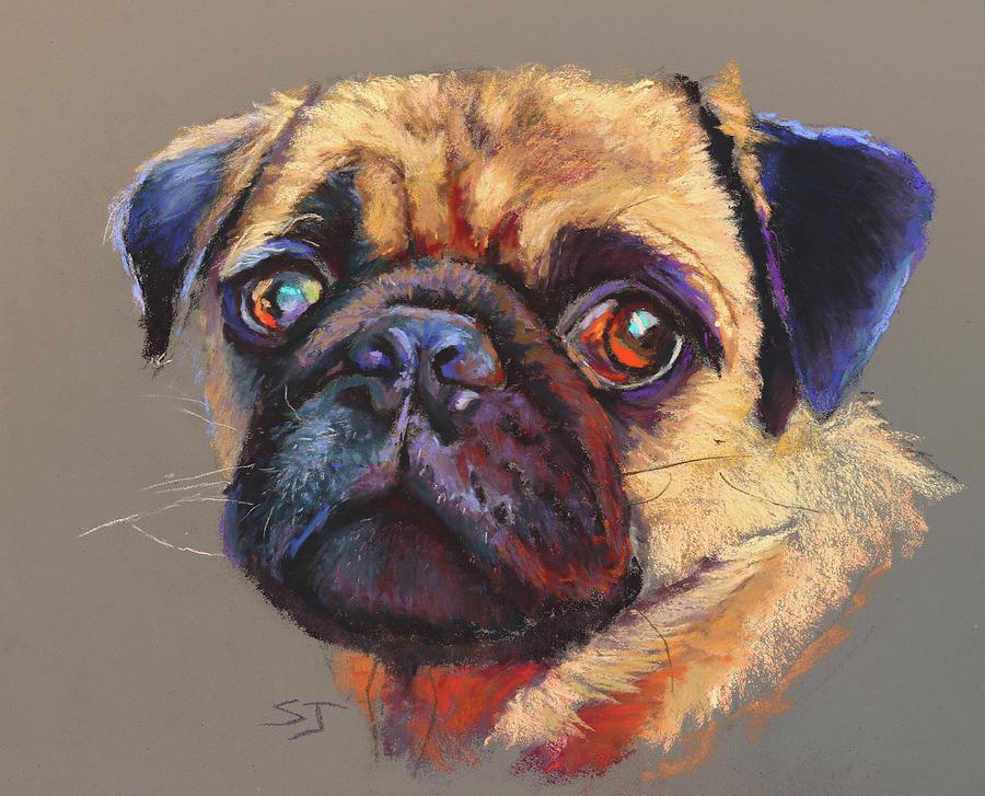 Precious Pug by Susan Jenkins