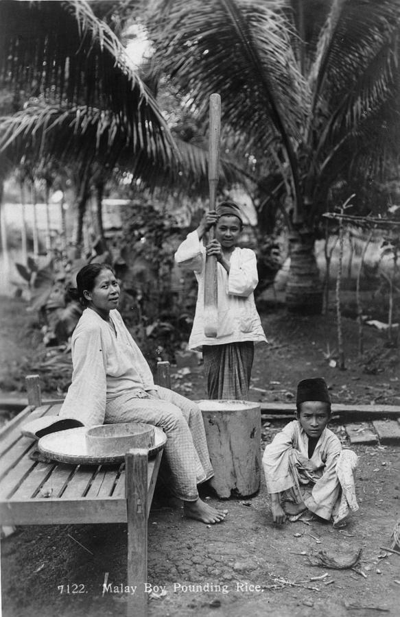 Preparing Rice Photograph by Spencer Arnold Collection