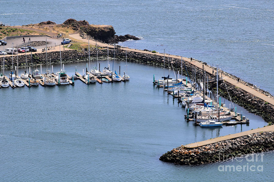 Presidio Yacht Club Marina by Diann Fisher
