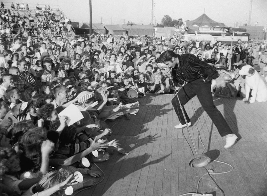Presley Performs Photograph by Hulton Archive
