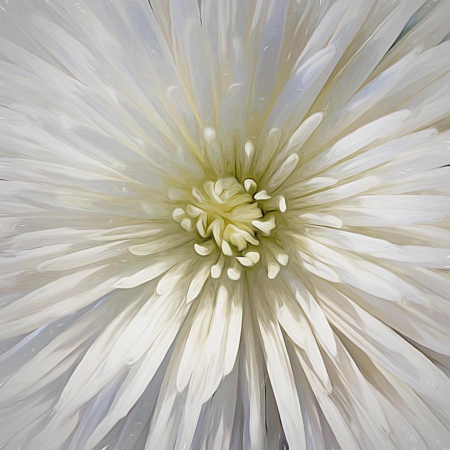 Pretty Bloom by Cindy Greenstein