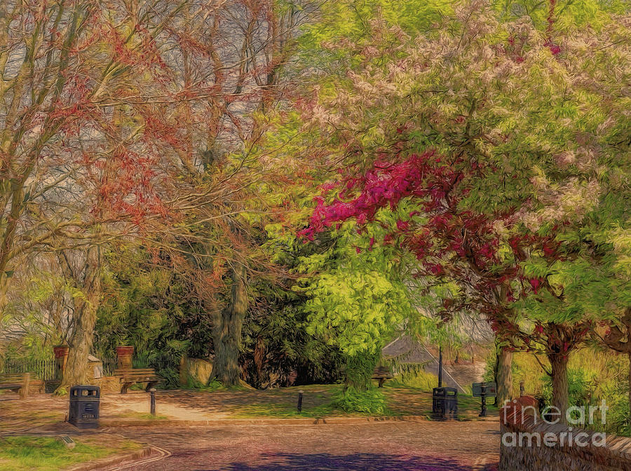 Lewes Photograph - Pretty Country Lane by Leigh Kemp