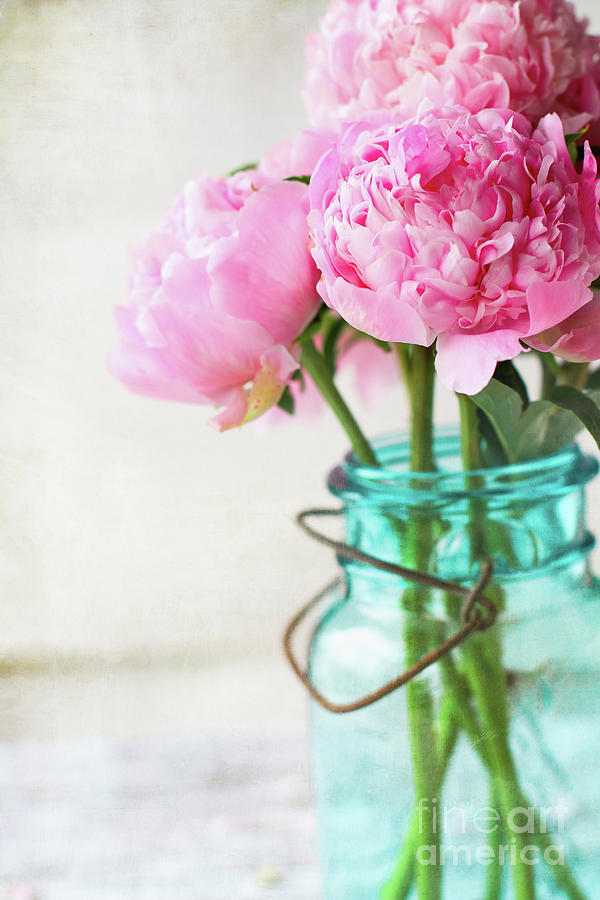 Pretty Pink Peonies in a Blue Antique Mason Jar by Stephanie Frey