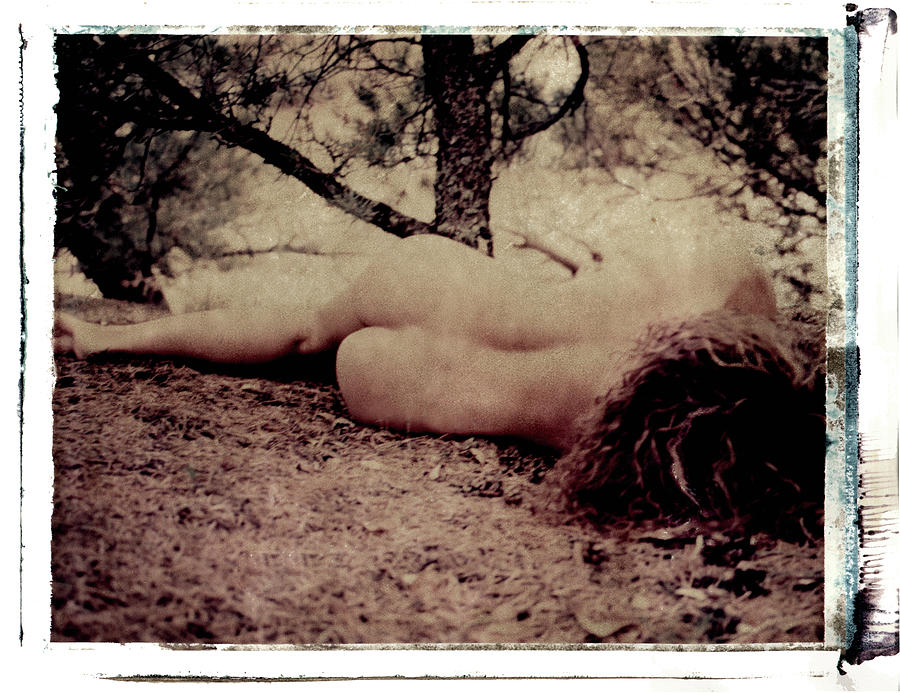 Primordial by Catherine Sobredo