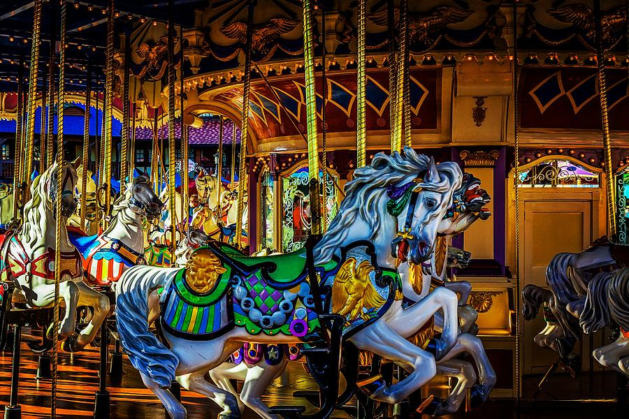 Prince Charming Carousel 2 by Rodney Lee Williams
