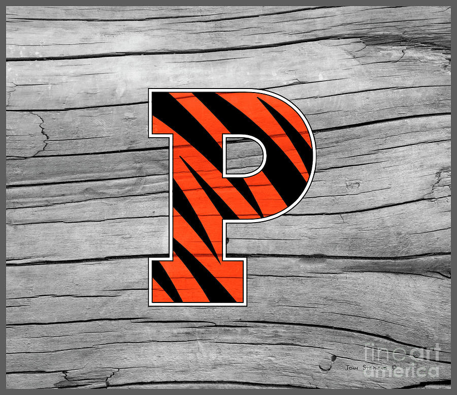 Princeton University Tigers Logo On Rustic Wood Photograph