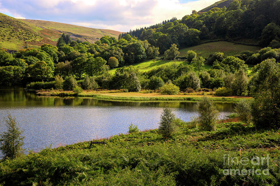Private Fishing on Doly mynach  by Chris Thaxter