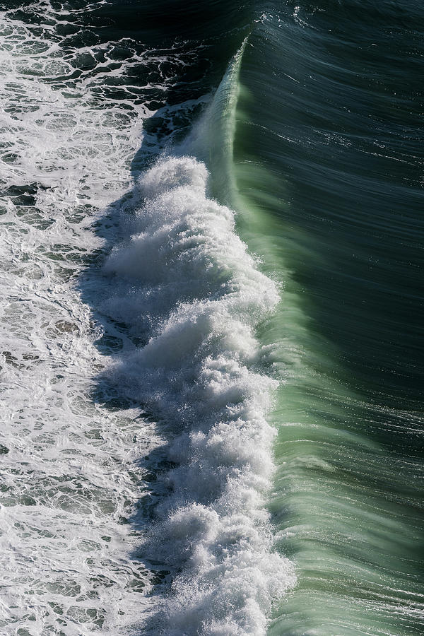 Profile of a Wave by Robert Potts
