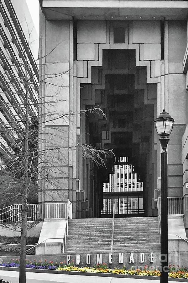 Promenade by Tom Gari Gallery-Three-Photography