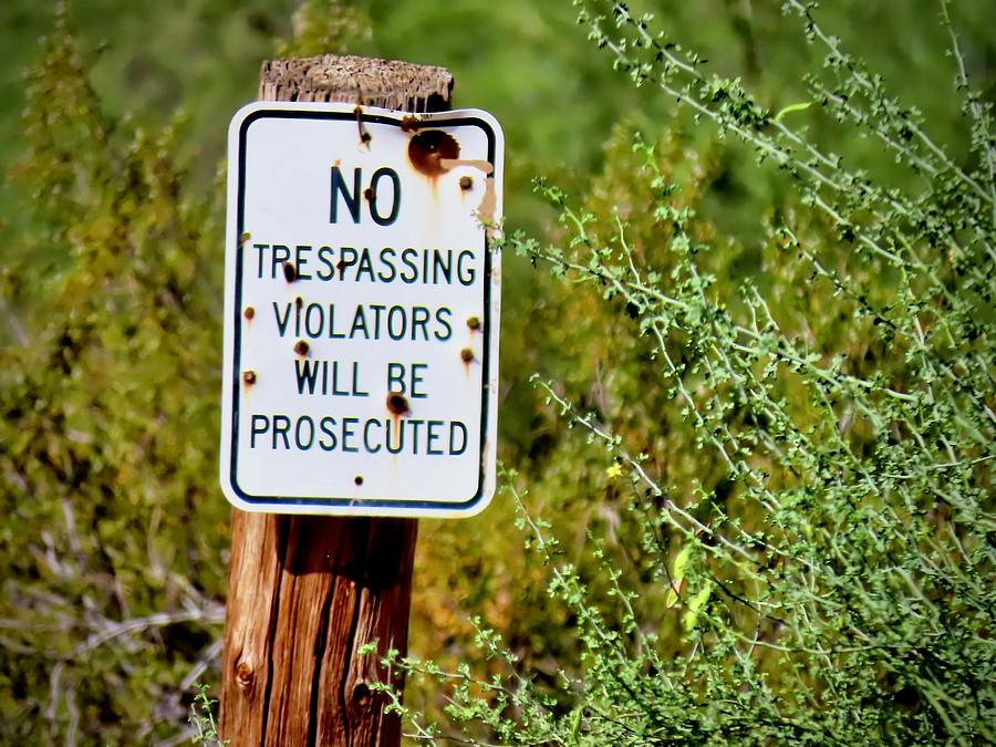 Prosecuted Sign by Judy Kennedy