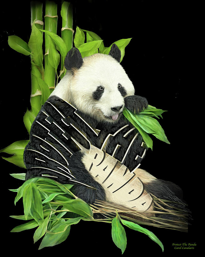Protect The Panda by Carol Cavalaris