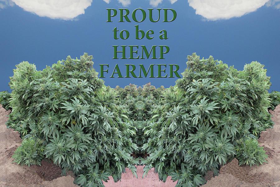 Proud to be a Hemp Farmer Under A Blue Sky by Julia L Wright