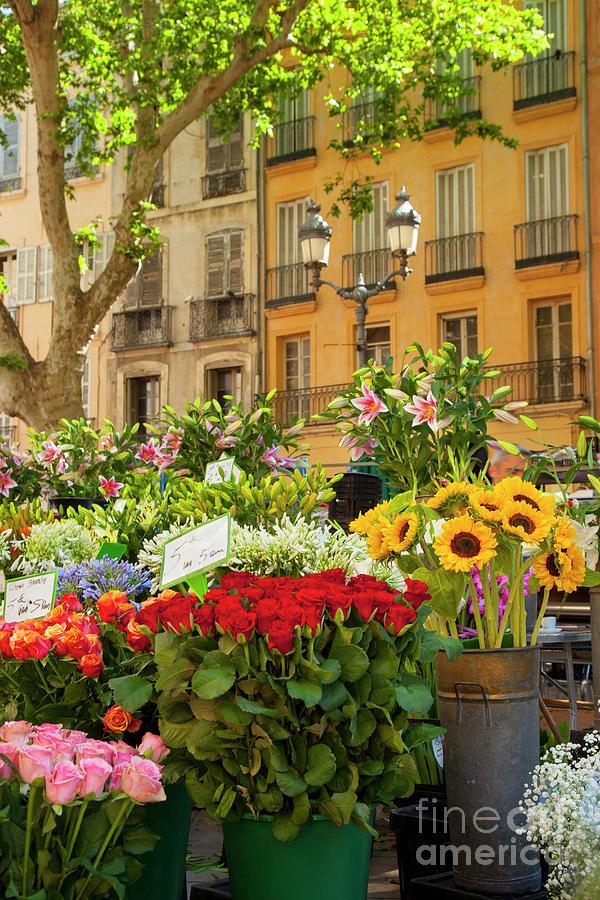 Provence Flower Market by Brian Jannsen