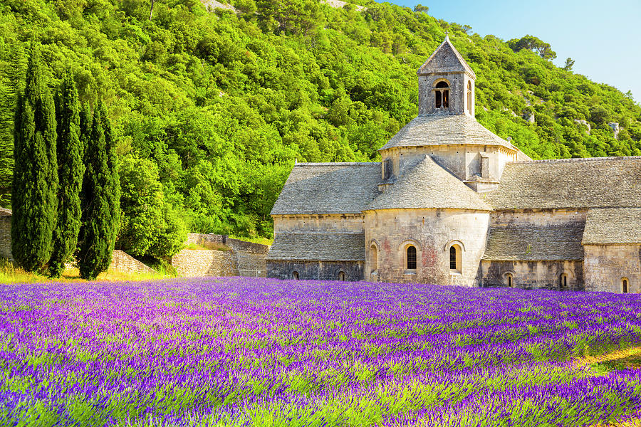 Provence, France Photograph by Spooh